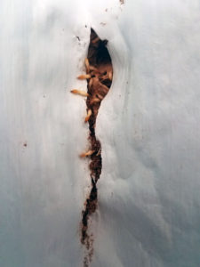 Termite Damage Advanced Termite and Pest Control