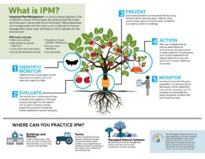 Integrated Pest Management Infographic