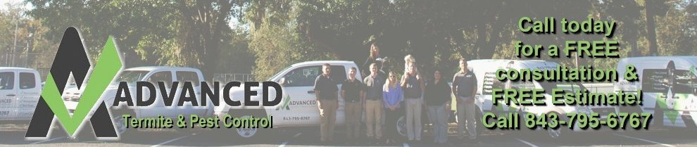 Advanced Termite and Pest Control